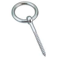 Stainless Steel Coach Screw Ring Bolt