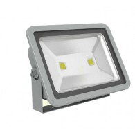 LED Floodlight 110/220V