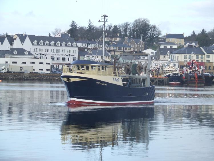 Mfv Ocean Dawn Mooney Boats Ireland